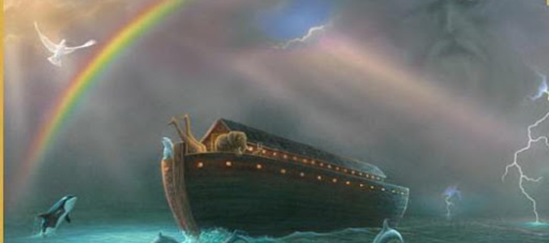 Tornasse Noè…